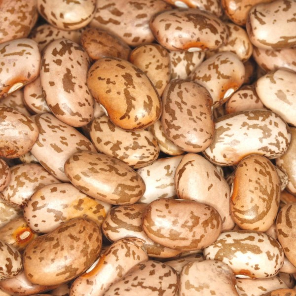 PINTO BEANS Wachtelbohnen trocken 25kg Sack